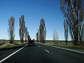 A23 Federal Highway (Australia)