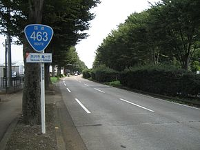Japan National Route 463